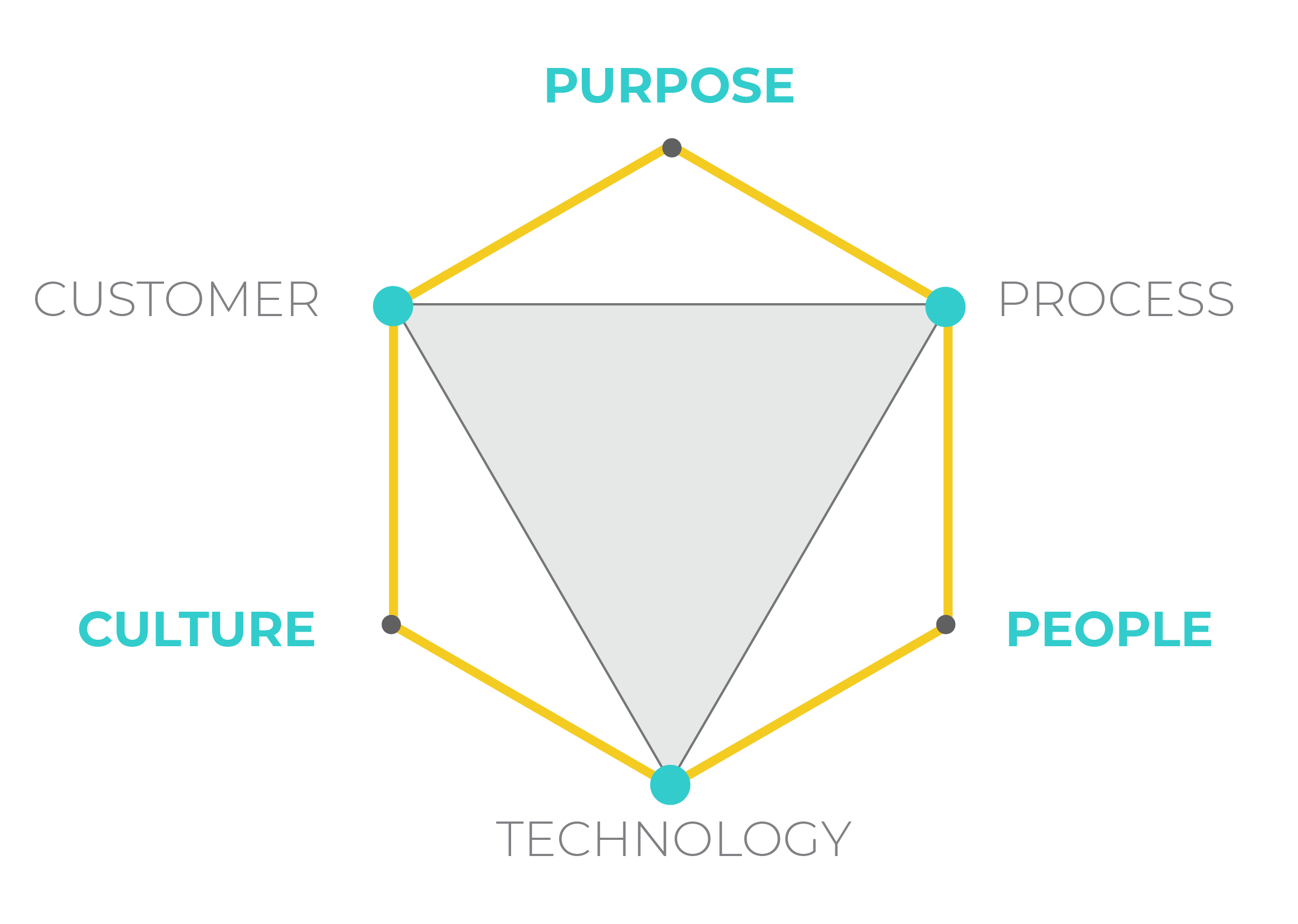 Hexagon showing Three6's enablers, purpose, people and culture